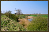 Veere (35), Windmill In Spring by corngrowth, Photography->Landscape gallery