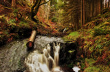 Lower Hindhope Beck by biffobear, photography->landscape gallery