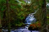 Woodland Wanderer by biffobear, Photography->Waterfalls gallery