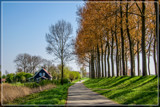 Cycle Path by corngrowth, photography->landscape gallery
