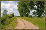 Walcheren Country Roads & Paths 17 by corngrowth, Photography->Landscape gallery