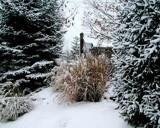 Old Bonhomme Winter 3 by jojomercury, photography->landscape gallery