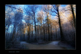 Winter blue by kodo34, photography->landscape gallery