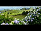 Azores Lookout - 5 by nigel_inglis, Photography->Landscape gallery