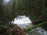 Oregon Falls by Anita54, Photography->Waterfalls gallery