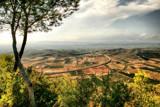 Castellón de la plana.... by fogz, photography->landscape gallery