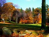 A Lovely Spot by ccmerino, Photography->Landscape gallery