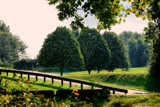 Threetrees and More by casechaser, photography->landscape gallery
