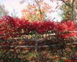 Fall Fence Abstract by jojomercury, Photography->Manipulation gallery