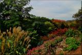 Cheekwood by tigger3, photography->gardens gallery