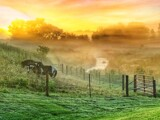 Early Morning on the Farm by Starglow, photography->landscape gallery