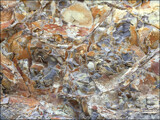 Rocky Abstraction by LynEve, photography->general gallery