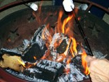 Marshmallows Anyone? by kidder, Photography->General gallery