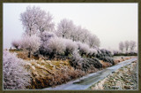 Winter In Zeeland 2009 (01) by corngrowth, Photography->Landscape gallery