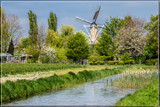 Grinding In Spring by corngrowth, photography->mills gallery