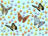 Butterflys Dancing In The Sky With Stars by pakalou94, Photography->Manipulation gallery