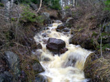 little stream by jariahtiainen, Photography->Landscape gallery