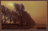 Winter In Zeeland 2009 (06) by corngrowth, Photography->Landscape gallery