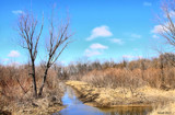 The Kankakee Marsh Lands by tigger3, photography->landscape gallery