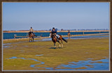 Low Tide Fun by corngrowth, Photography->Shorelines gallery