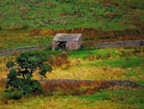 Shed by biffobear, photography->landscape gallery