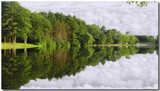 Nature's Mirror by ccmerino, photography->landscape gallery