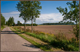View Of A Polder 2 by corngrowth, photography->landscape gallery