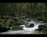 Stream by lsdsoft, photography->waterfalls gallery