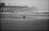 Fog at the Pier by tweir, photography->shorelines gallery