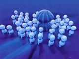 Image: The Gathering