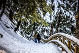 Winter Walk by Eubeen, photography->people gallery
