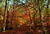 Looking Back by biffobear, photography->landscape gallery