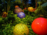 Valley of the Balls by casechaser, photography->gardens gallery