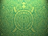 turtle by groo2k, praetori arbitrio gallery