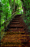 Steps by biffobear, photography->landscape gallery
