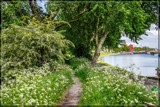 Spring Along The Canal by corngrowth, photography->landscape gallery