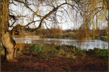 as Seasons turn... by fogz, Photography->Landscape gallery