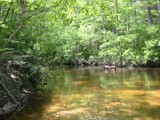 Creek I grew up on by bayoubooger, photography->shorelines gallery