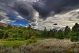 A Trip to Wonderland by DigiCamMan, photography->manipulation gallery