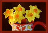 Daffs in a jug by LynEve, photography->flowers gallery
