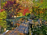 fall at maymont by jeenie11, Photography->Landscape gallery