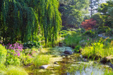 Early Summer by Ramad, photography->gardens gallery