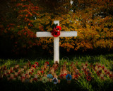 REMEMBRANCE DAY - 11 NOVEMBER 2012 by LANJOCKEY, photography->places of worship gallery