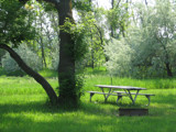 Waiting for a picnic by debblor, Photography->Landscape gallery