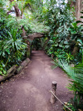 Lied Jungle by Pistos, photography->gardens gallery