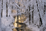White and golden by Inkeri, photography->landscape gallery