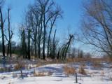 Winters Last Beauty 2 by kidder, Photography->Landscape gallery