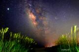 Pawleys Island at Midnight by Mvillian, photography->skies gallery