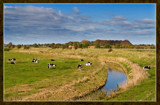 Rural Scene 1 by corngrowth, Photography->Landscape gallery