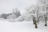 A Land of Snow and Frost by Silvanus, photography->landscape gallery